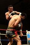 緑川5_2013.12.08.JPG