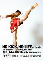 no_kick_no_life.jpg